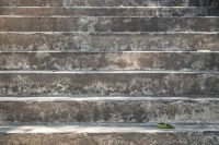 Concrete stairway with green leaf on first step