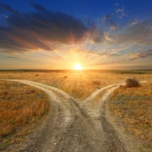 Fork roads in steppe on sunset background